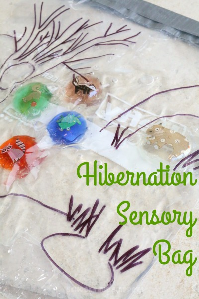 Hibernation sensory bag to explore animals in winter for Hibernation crafts for preschool