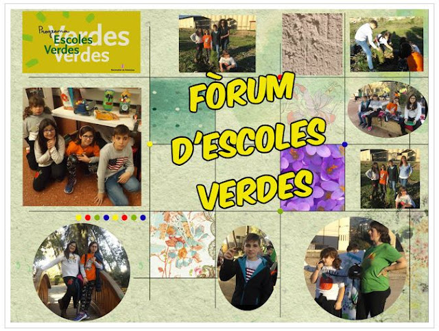 http://escolaverdaroquetes.blogspot.com/