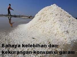 https://mazriko.blogspot.com/2018/05/ketahui-bahaya-konsumsi-garam-belebih-dan-kekurangan-bagi-kesehatan.html