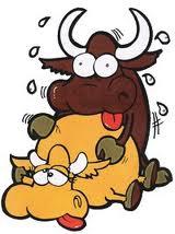 Montando un toro salvaje - 3 part 8