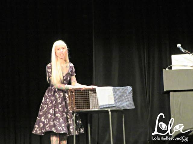 Catsbury Park Cat Convention|Cat cafe|hanna shaw