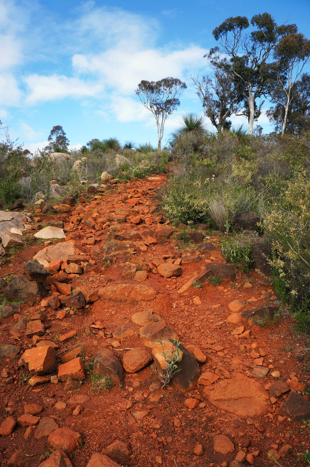 John Forrest National Park – Day trip from Perth - Swiss ...