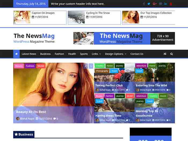 The news mag wordpress Theme free Download