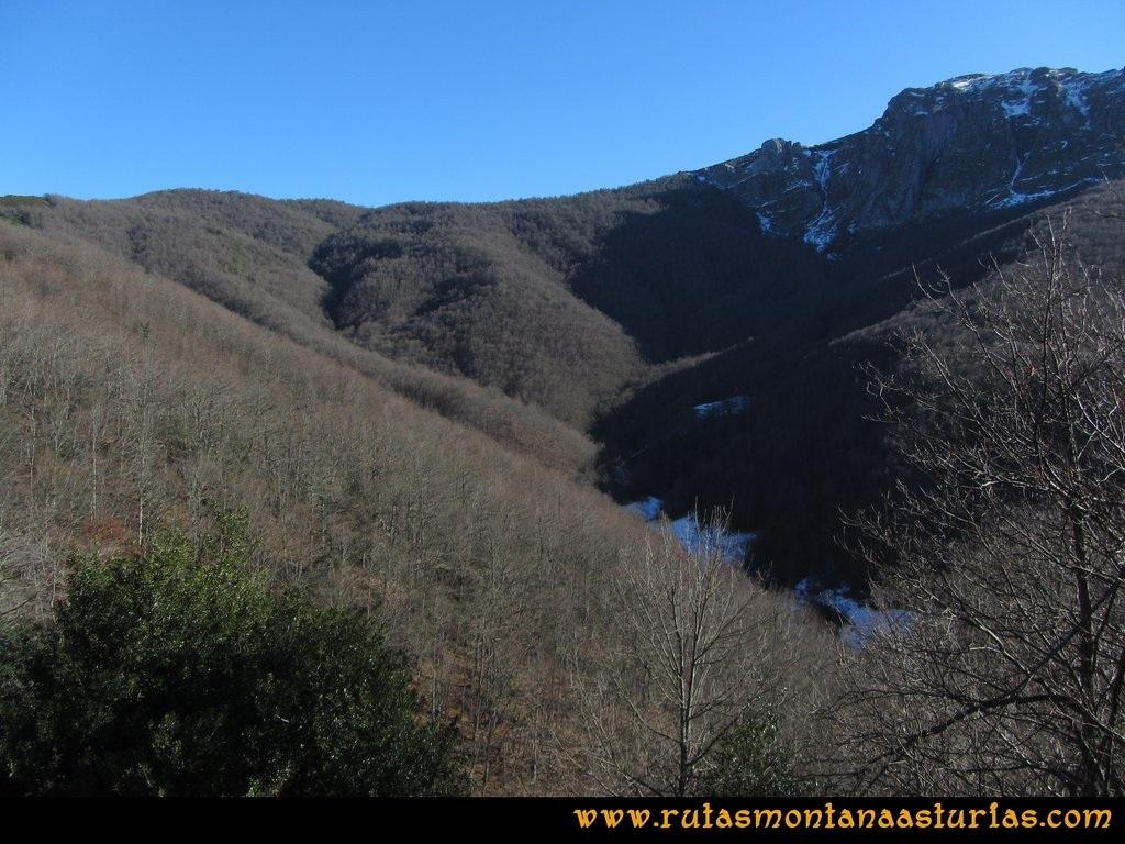 Pico Mosquito desde Tarna: Bosque en la zona de Tarna