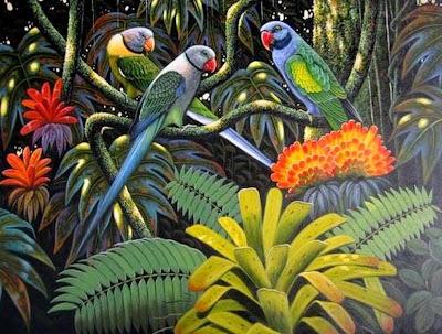 paisajes-y-aves
