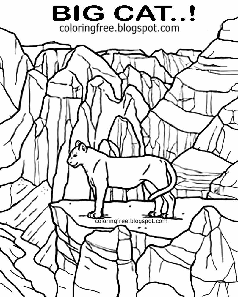 Printable For Teenagers Canadian Mountain Scenery Wildlife Coloring Page Canada Lynx Wild Cat Sketch