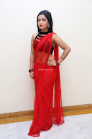 Aasma Syed in Red Saree Sleeveless Black Choli Spicy Pics ~  Exclusive Celebrities Galleries 050.jpg
