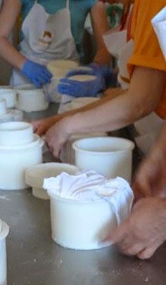 Elaboración de queso artesanal