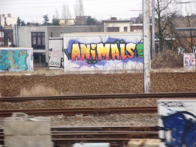 antwerpen berchem animals