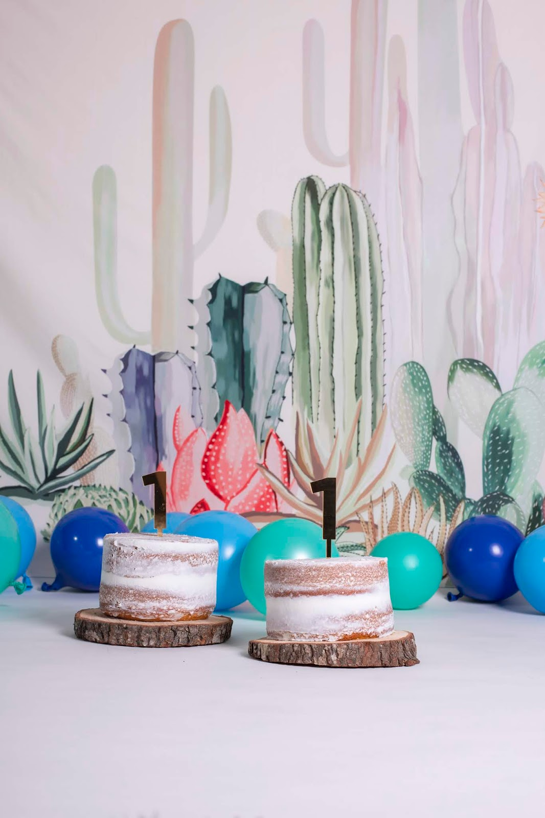 Cactus Themed First Birthday Party