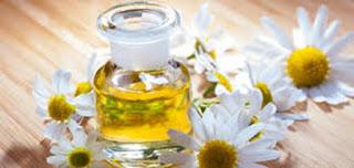 نباتات وأعشاب طبيعية ذات فوائد مذهلة للجمال والبشرة
