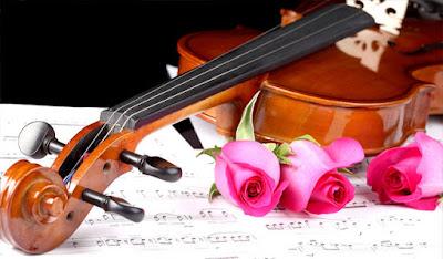 Thương hiệu đàn Violin cao cấp tốt nhất