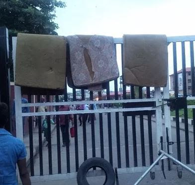 UNILAG students protest over bedbugs, mosquitoes infested hostels