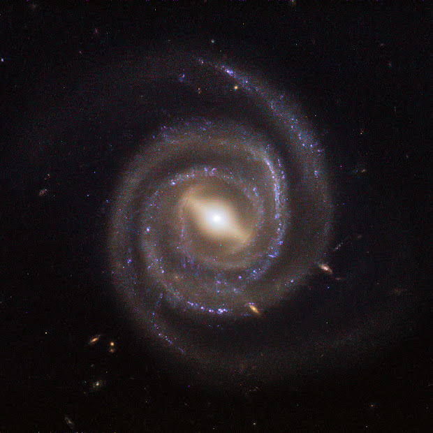 Barred Spiral Galaxy UGC 6093