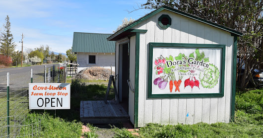 Dora's Garden and Goat Ranch