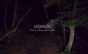 Download Audio | AT - Ugwadu