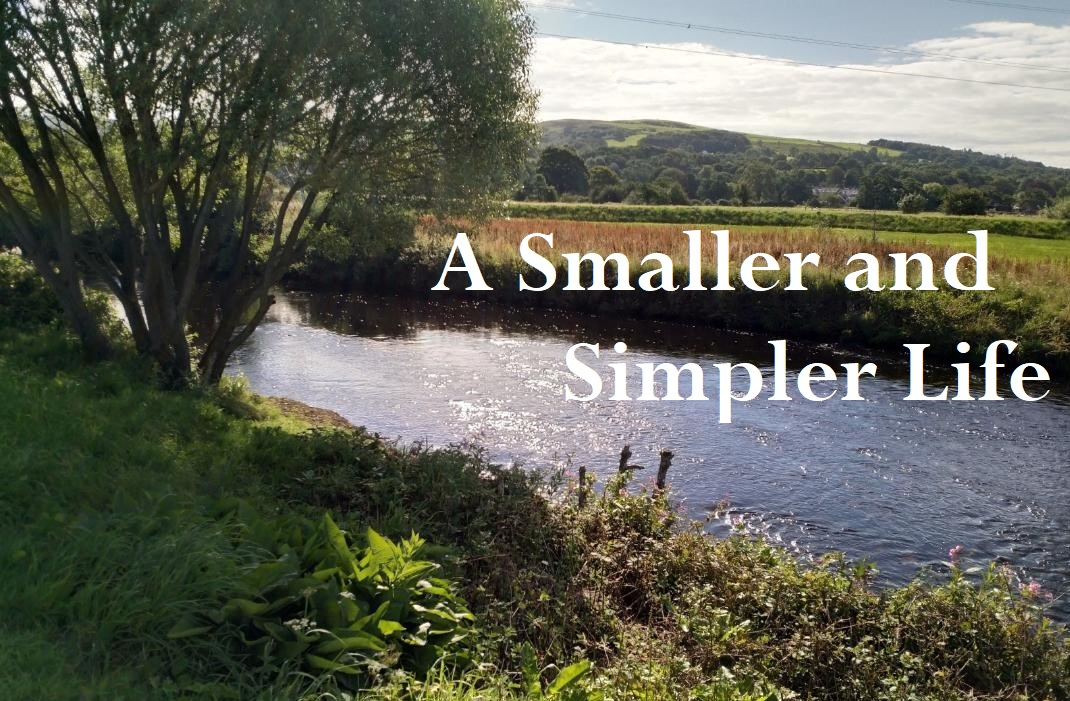 A Smaller and Simpler Life