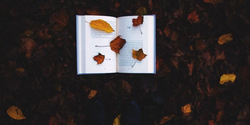 Acho que já deu para perceber que eu sou uma pessoa louca por livros e que se eu pudesse leria um por dia, mas infelizmente a vida não é um mar de rosas e eu não moro em um castelo e nem sou milionário, então preciso correr e fazer as minhas coisas e isso faz com que o meu tempo seja curto. Mesmo assim, eu sempre estou de olho nos lançamentos de livros que tem porque eu sempre quero comprar um livro novo para ler. Quem é que não gosta de uma historia boa em um livro novo? Eu sou apaixonado por vários tipos de livros e pensando nisso vim trazer os lançamentos literários de junho de 2016 pra vocês, mas separei os que eu mais estava aguardando e que eu mais tenho vontade de ler. Todos os meses farei uma postagem assim pra trazer sempre as novidades literárias para vocês porque sei que amam. Aproveitem a postagem.