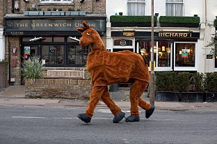 pantomime horse