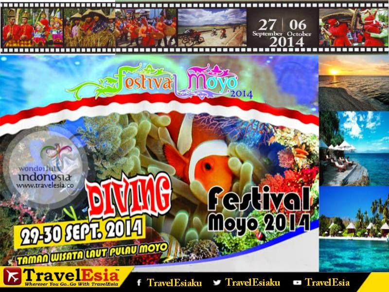Moyo Festival 2014