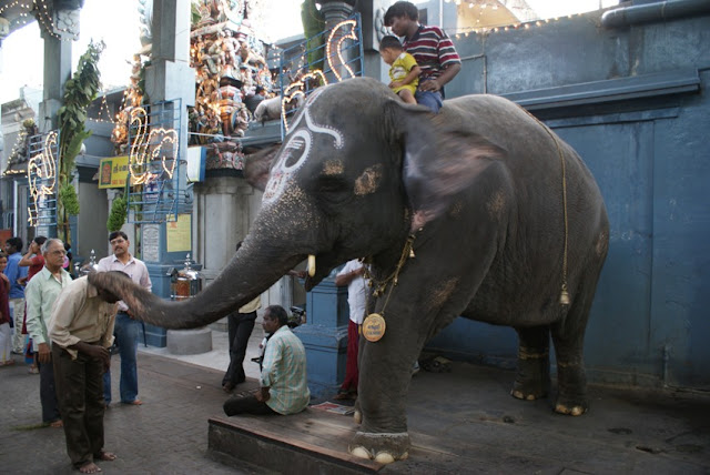 Manakula-Vinayagar-Temple-Pondicherry
