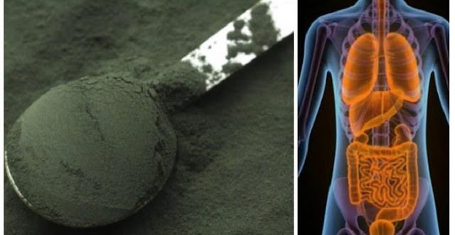 How To Use Spirulina To Detoxify Your Whole Body And Never Be Sick Or Tired Again