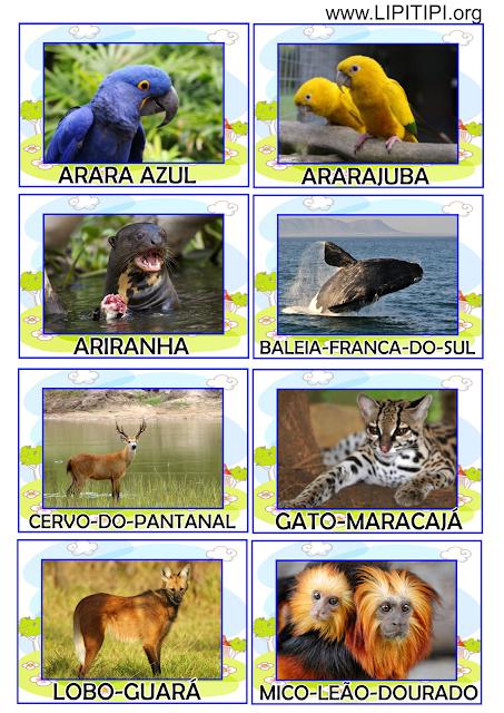 Jogo Pedagógico Animais Brasileiros em Extinção.