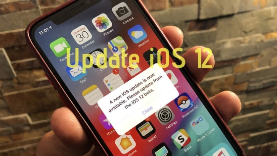 Cara Update iOS 12