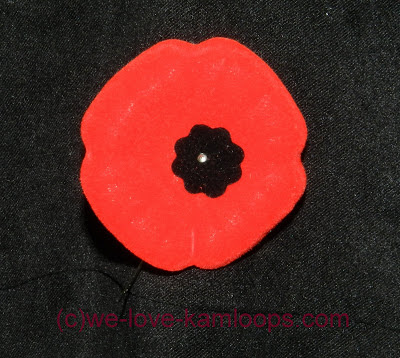 The poppy grows in Flanders Fields and used to remember the soldiers who died in war.