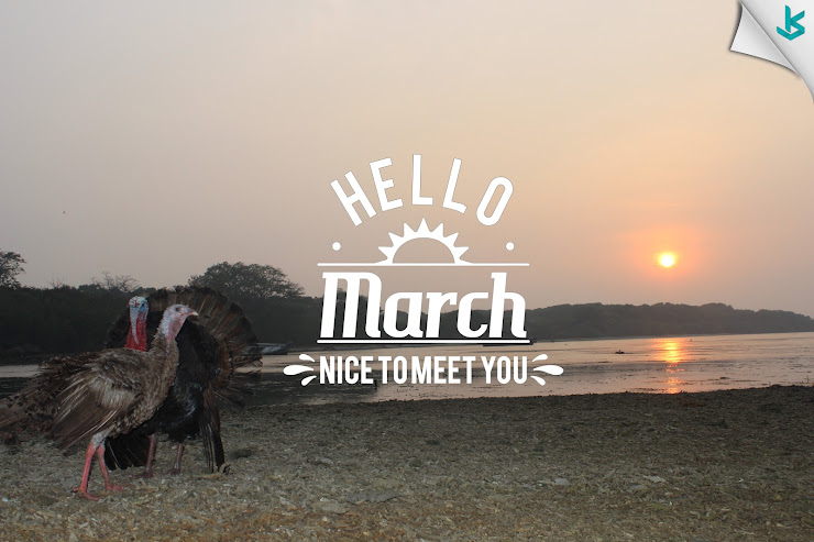 Gambar Vector - Hello March...