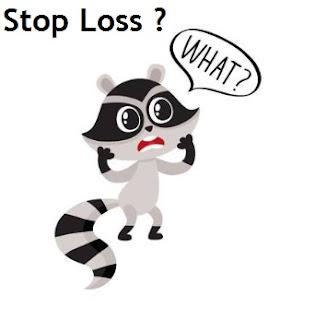 apa itu stop loss