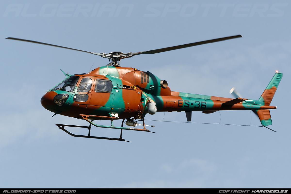 صور مروحيات القوات الجوية الجزائرية Ecureuil/Fennec ] AS-355N2 / AS-555N ] - صفحة 3 5
