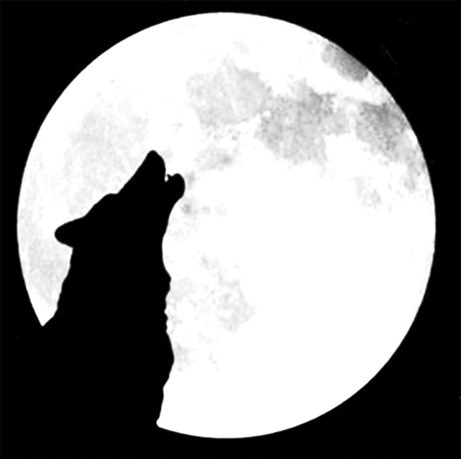Lobos Solitarios