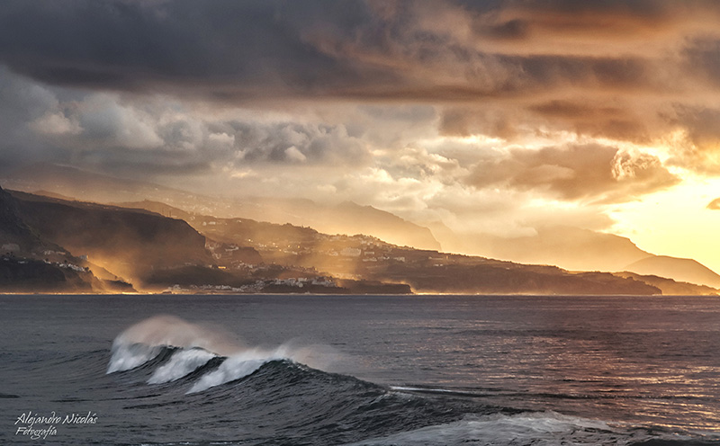 Puerto de la Cruz- Tenerife