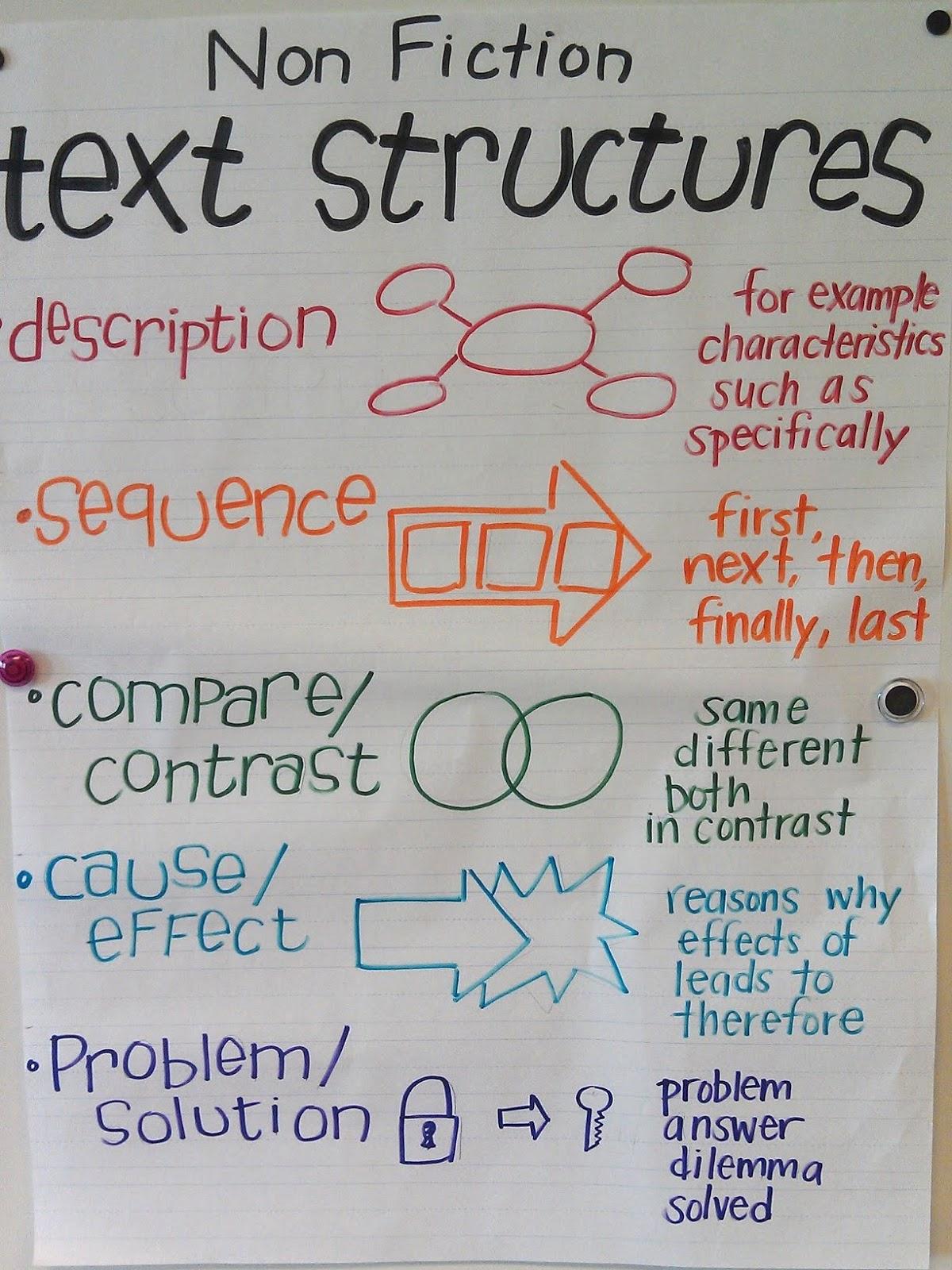 Mrs Braun S 2nd Grade Class