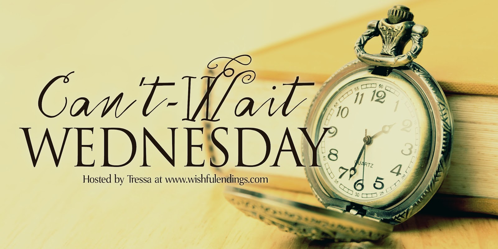 Can't Wait Wednesday: The Accidental Guardian