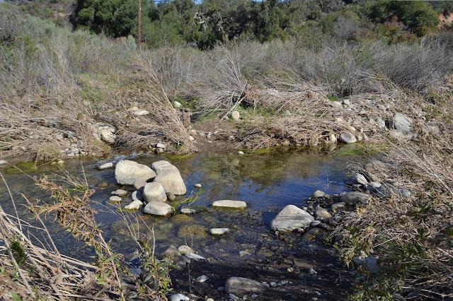 a little more Ventura River