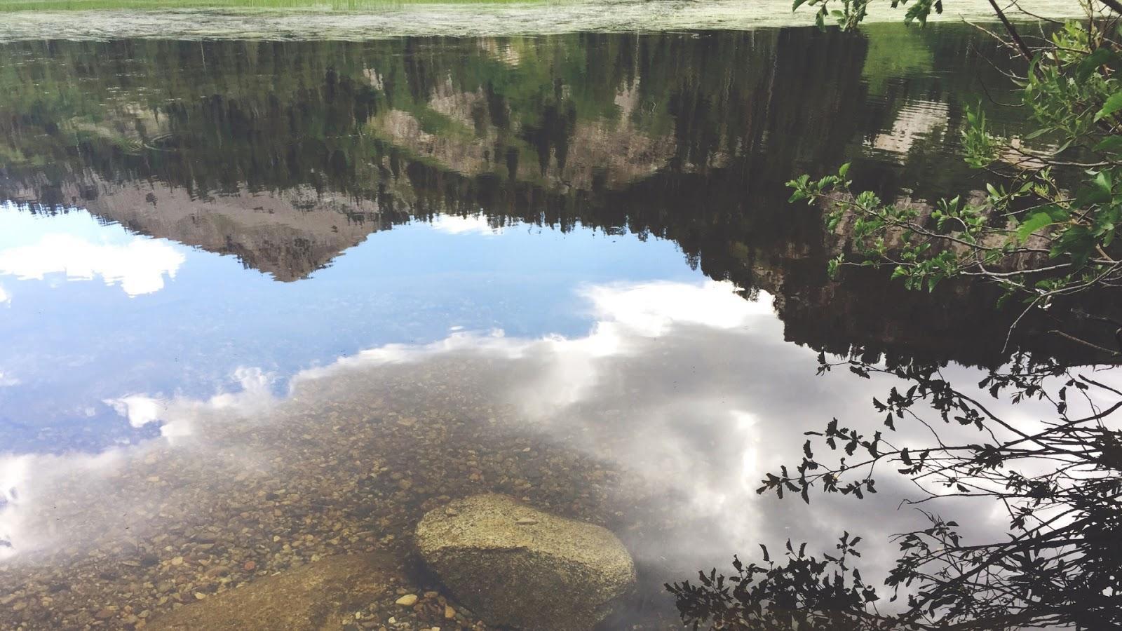 Water Reflection Desktop Wallpaper Downloads // www.thejoyblog.net