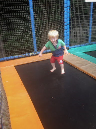 woodside animal farm trampolines