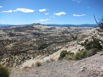 View looking down from Route 12 at the Lower Calf Creek Falls trail
