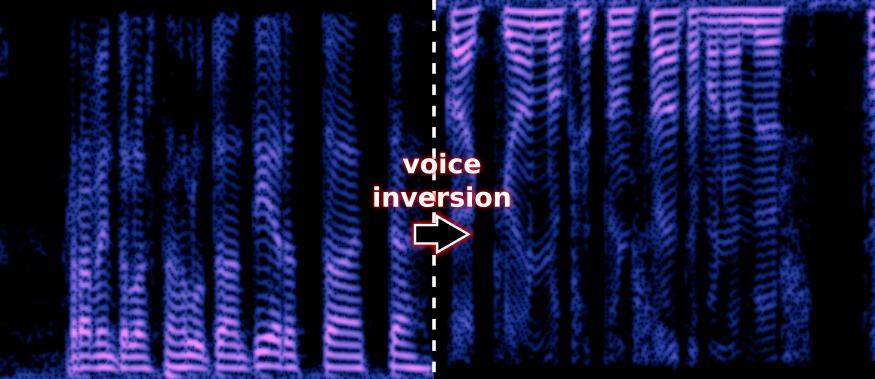 absorptions: Descrambling the voice inversion scrambler