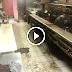 Depois de ser despedido resolveu filmar as condições da cozinha do restaurante chinês em que trabalhava !