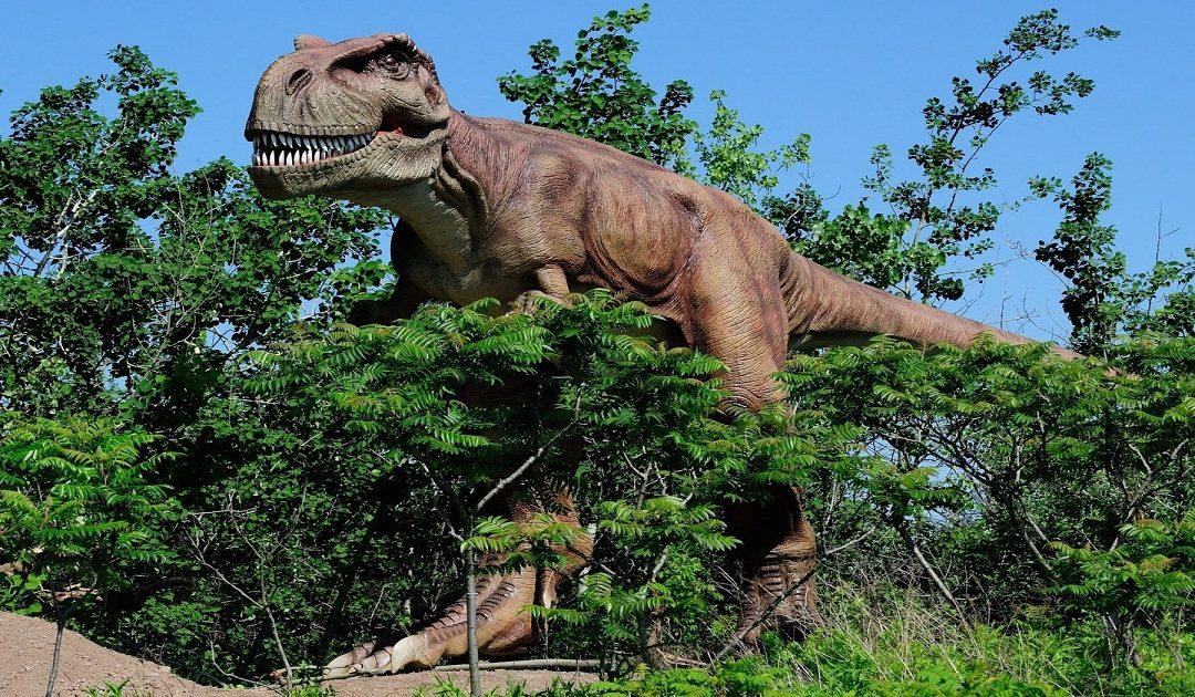وزير الطاقة والمعادن يؤكد حرصه على استرجاع جهة درعة تافيلالت لديناصورها من مراكش