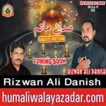http://www.humaliwalayazadar.com/2014/10/rizwan-ali-danish-nohay-2015.html