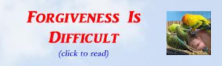 http://mindbodythoughts.blogspot.com/2011/05/forgiveness-is-difficult.html