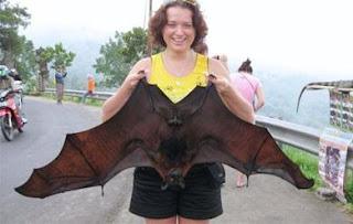 Mujer agarrando a un murciélago enorme