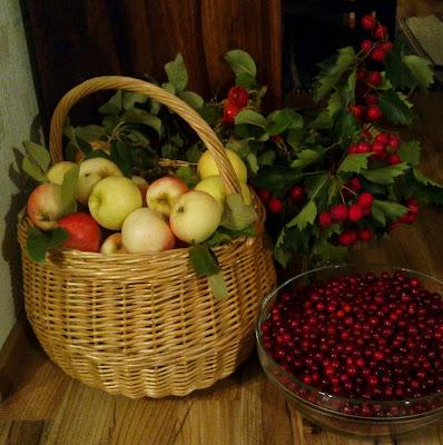 omenakori, puolukat, orapihlajan marjaoksa