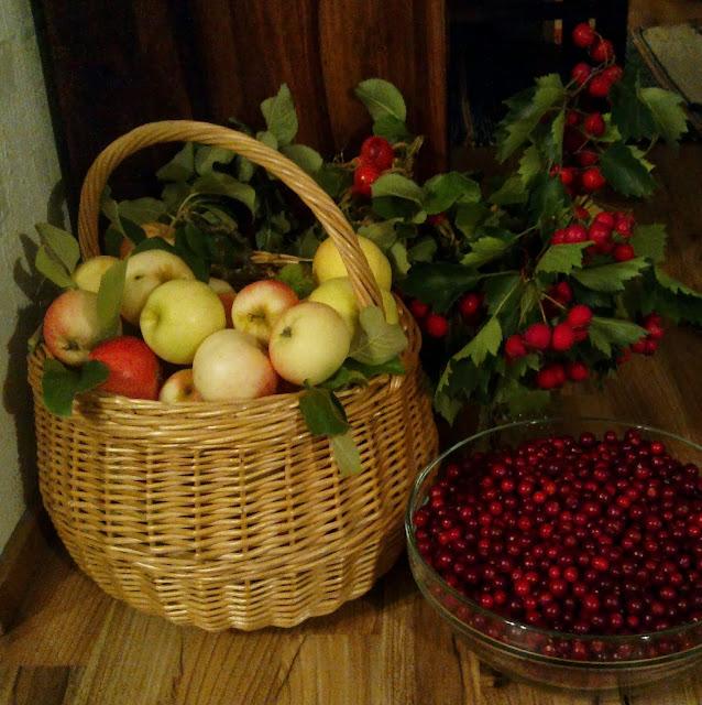 omenakori, puolukat, marjaoksa, omenat,  orapihlaja