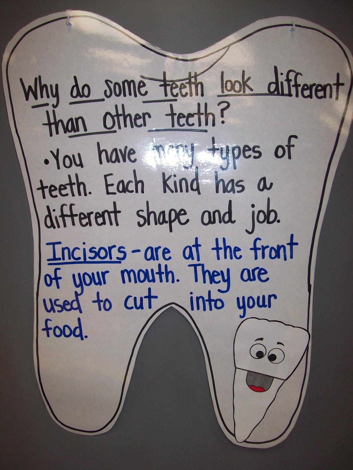Teaching With Terhune Dental Health