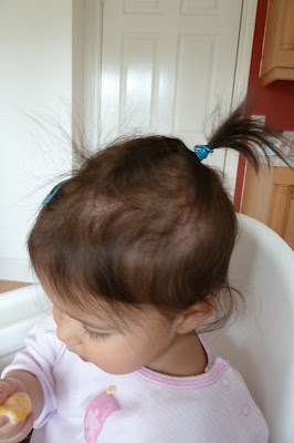 Toddler's first pony tail